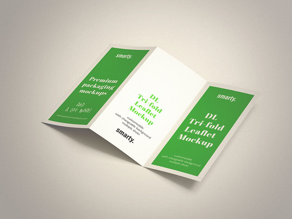 Tri Fold DL Leaflet mockup with speciall effect